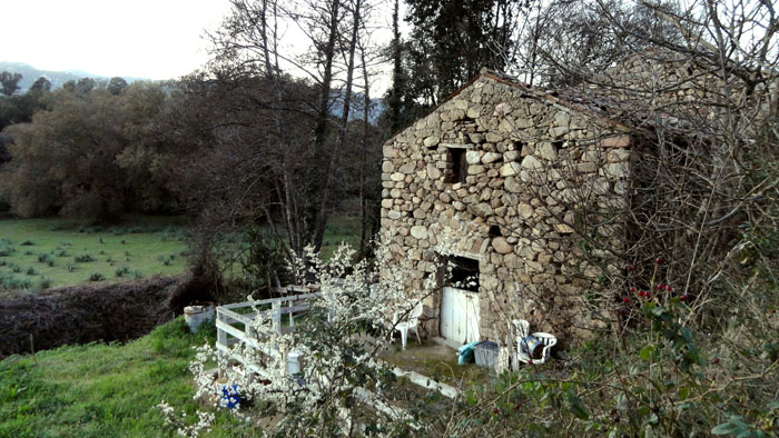 MAISON pierre de rivière, village, valle di mezzana, corse