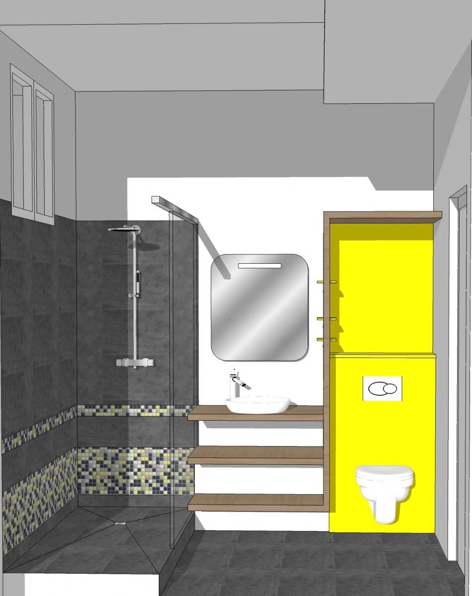 Restructuration d'une salle d'eau (La Rochelle 17) 2015