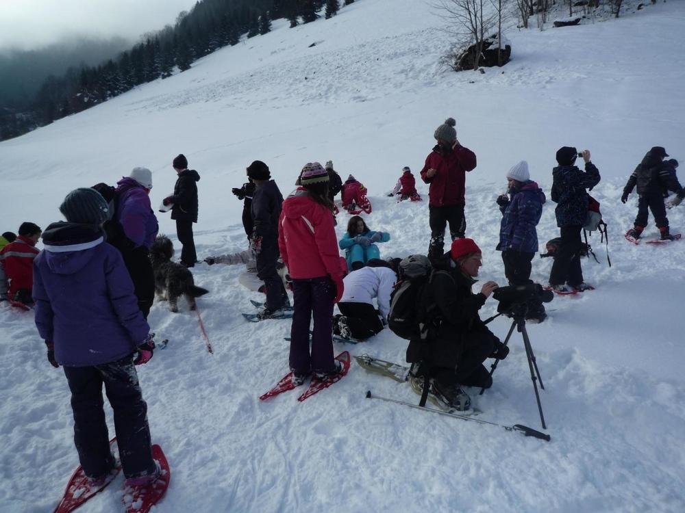 sorties scolaires fabrice testud accompagnateur en montagne haute savoie igloo fondue nocturne scolaires raquettes à neige