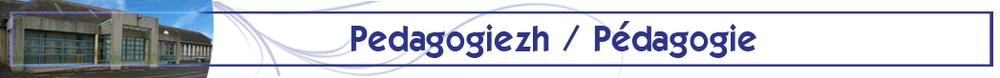 Releg_pedagogiezh