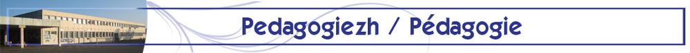 Gwiseni_pedagogiezh