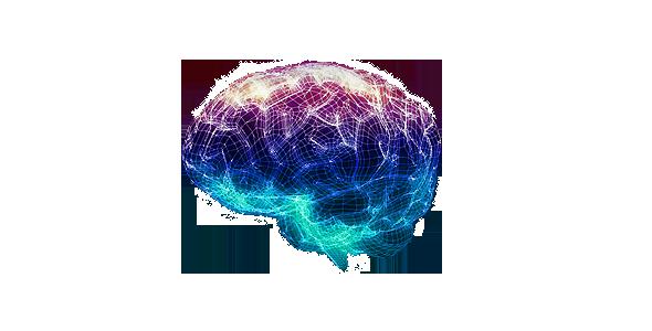 wire_brain