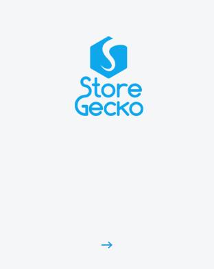 StoreGecko Coworking Space Sofia Office IT