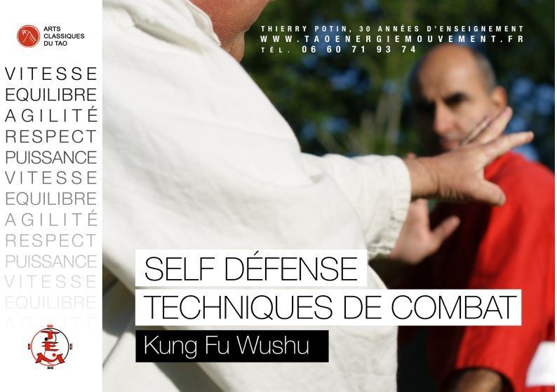affiche_kungfu_1