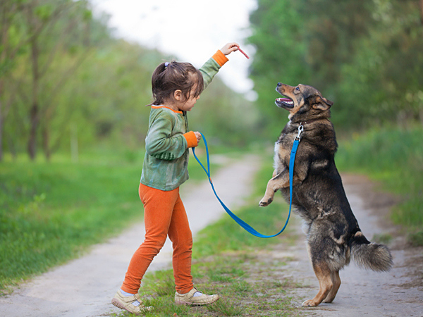 082614-little-girl-training-dog-iStock-600