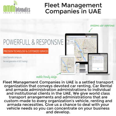 Who is the Fleet Management Companies in UAE