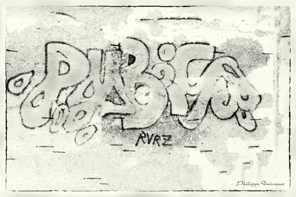 _DSC3866