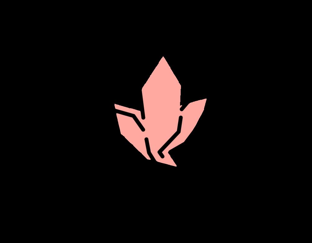 da-muoi-damilama-logo-chuan
