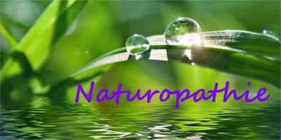 naturo11