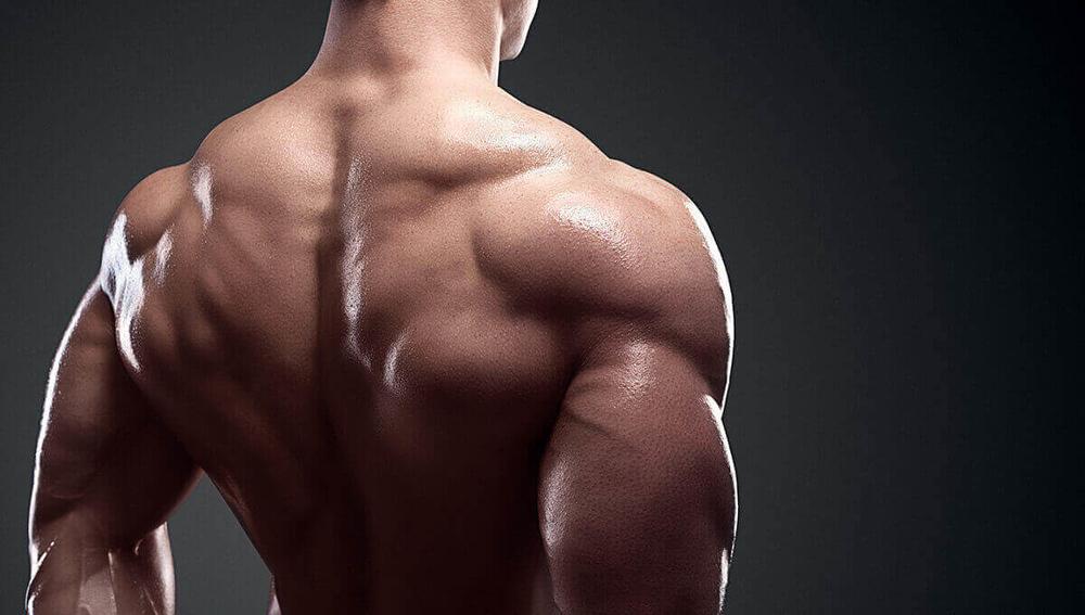 best_bodybuilding_supplements_2018