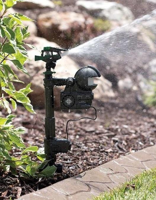 Best_Motion_Activated_Sprinkler