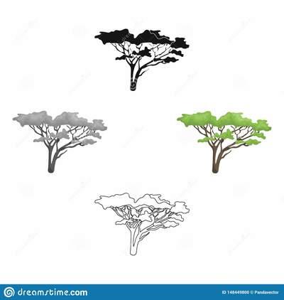 Arbre dans la savane ic ne simple de safari africain bande dessin e web noir d illustration actions symbole vecteur style noire 148449800